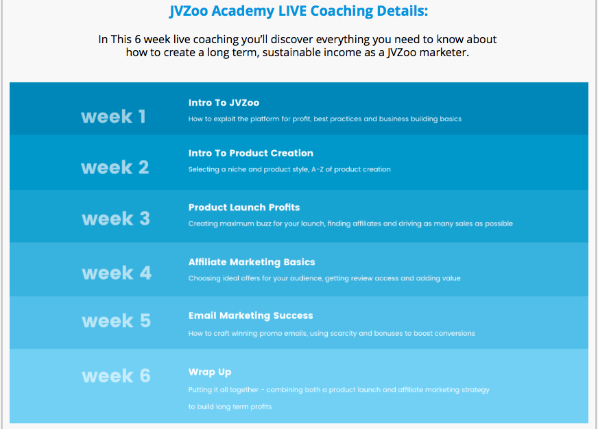 jvzoo academy 6 weeks live coaching